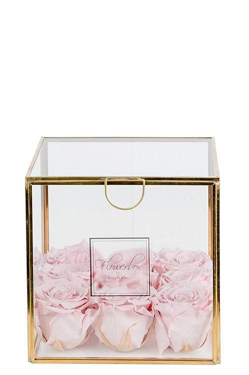 Lovely Rose M Deluxe