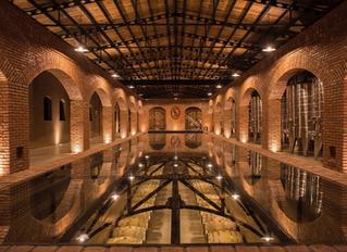 La Joya de San Miguel de Allende: Viñedos San Francisco