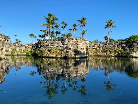Paraíso Gastronómico en la Selva Maya
