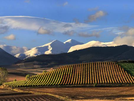 Denominacion de Origen Rioja