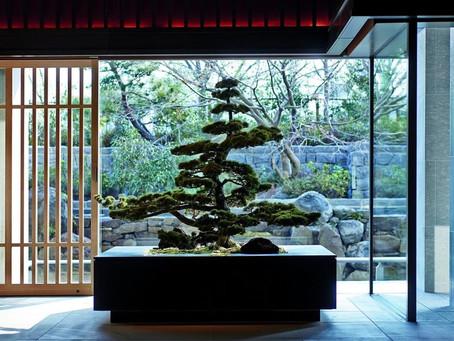 Geishas y samuráis: Ritz-Carlton Kyoto