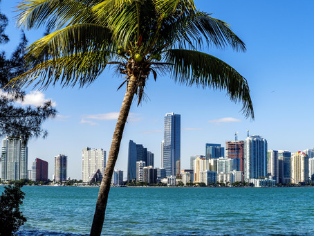 A Miami Guide for Food Lovers