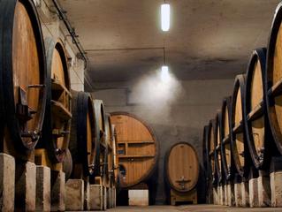 Domaine Tempier: Amor por el Vino