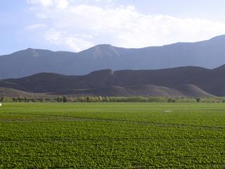 Descubrir el Valle de Parras con Casa Madero