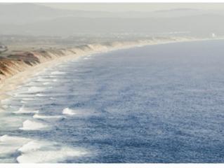 Entre el Mar y el Vino: Sea Sun