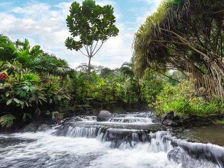 Experiencia termal en Costa Rica: Tabacón Thermal Resort & Spa