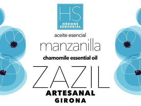 Las maravillas de ZazilArtesanal