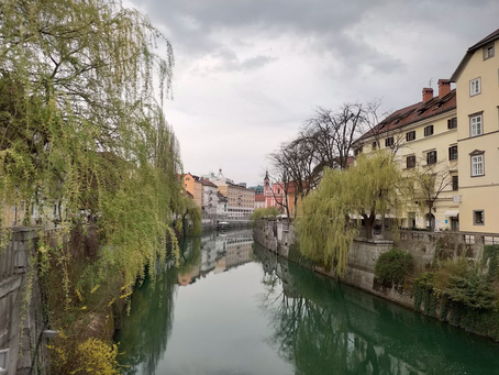 On the Banks of the Ljubljanica River