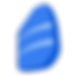 kisspng-electric-blue-azure-other-rosett