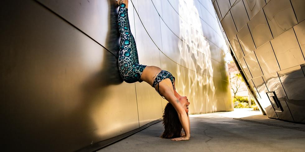 Live Yoga Vinyasa Flow