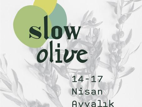 Slow Olive