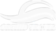 1 orchid travel shirt logo + text FS log