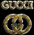 gucci-gold-vadim-pavlov-transparent.png
