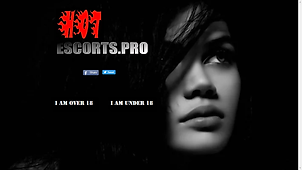 HotEscorts Pro.png