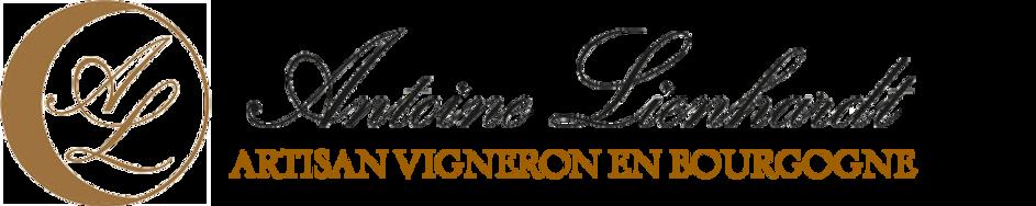 Antoine Lienhardt_2017 logo_edited.png