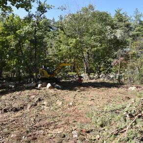 『有明の家』工事監理 伐採終了 20211019