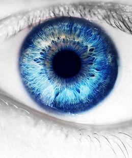 Amnioworks Eye Medisys USA
