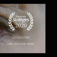 ECOSYSTEM GRAND PRIX STRATEGIE 2020 FILM.jpg