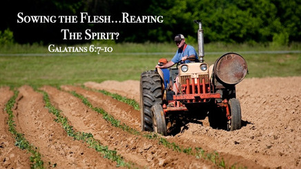 Sowing The Flesh...Reaping The Spirit?