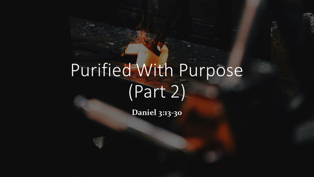 Purified With Purpose (Part 2)