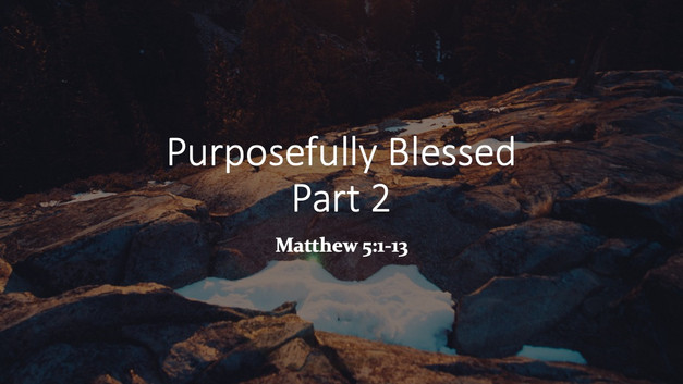Purposefully BlessedPart 2