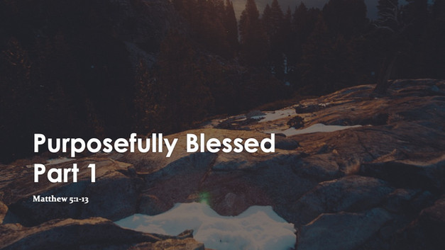 Purposefully Blessed Part 1