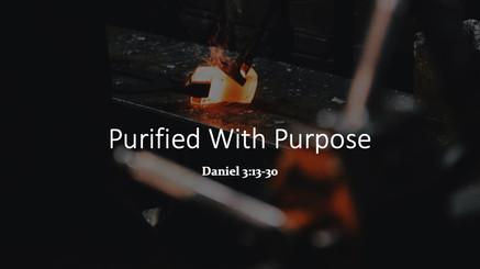 Purified With Purpose