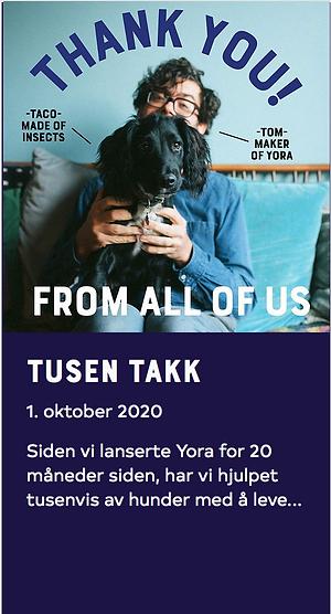 Skjermbilde 2021-01-31 kl. 23.30.34.png
