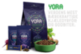 Yora_Product-Line-Up_Nov19-V2-Transparen