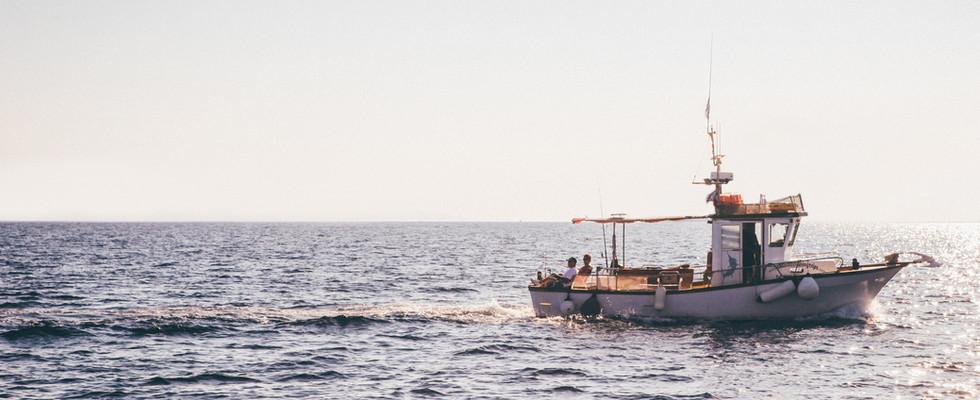 Aquaculture Feasibility Studies