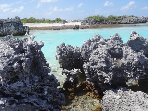Île aux récifs