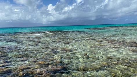 Vidéo : Île aux récifs