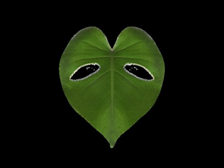monster leaf heart-1.png