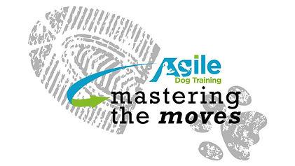 mastering the moves slide.jpg