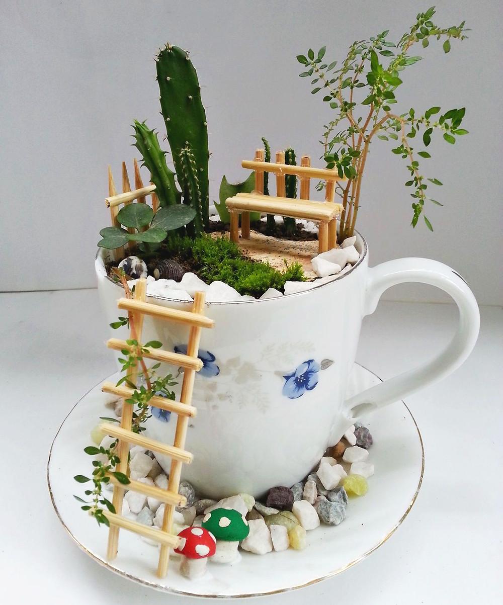 Mini jardines de cuento: un jardín en una taza de té