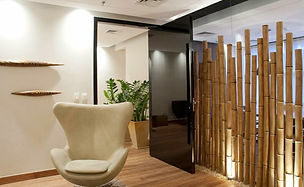 Bambú.jpg