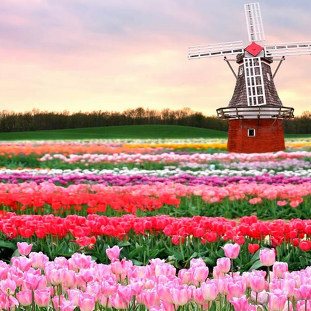 Los 6 jardines más bonitos del mundo