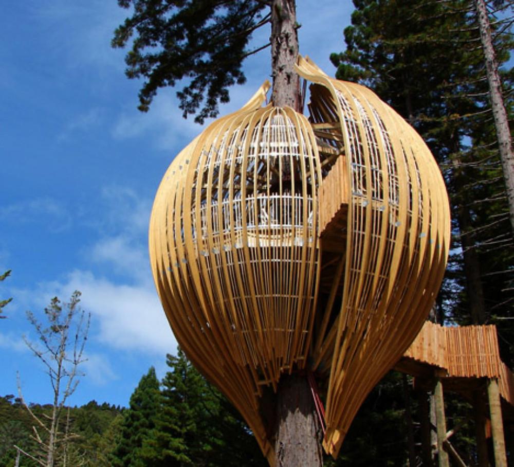 7 impresionantes casas de árbol: casa con forma de avellana