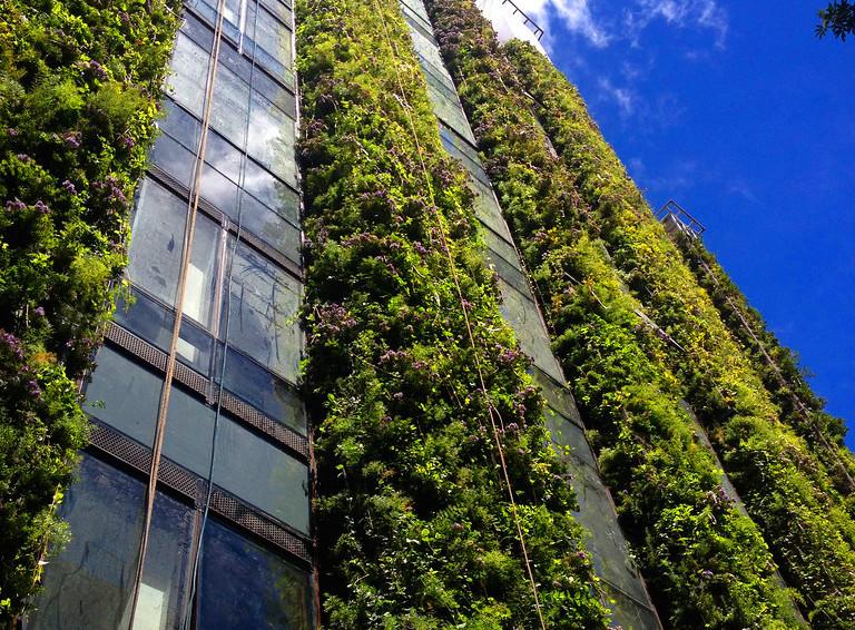 Jardín vertical en Edificio Santalaia (Colombia)