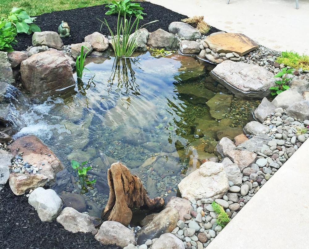 Jardines con estanques ovalados