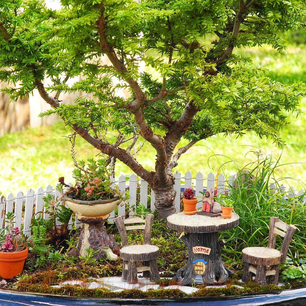 Mini jardines de cuento: mini jardín de madera