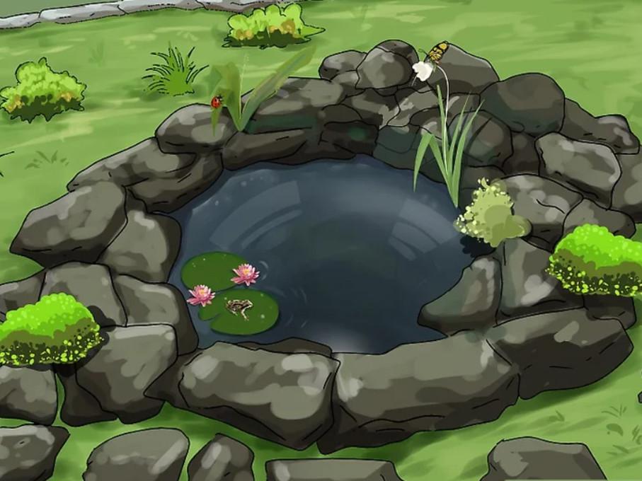 Cómo hacer un estanque en el jardín: decoración