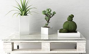 Mesa de palet con plantas.jpg