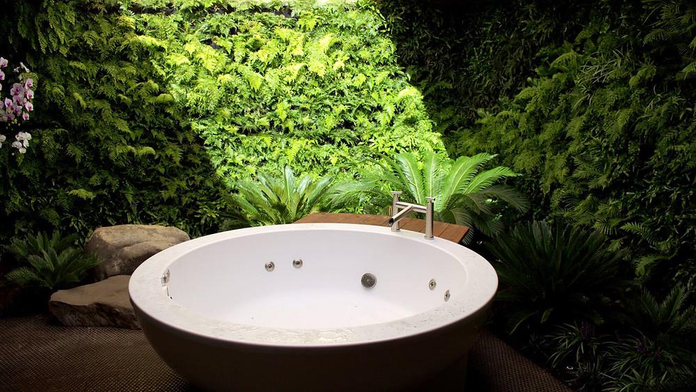 Jardines verticales en el baño