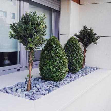 Diseño realizado por Jardines de Kalmia