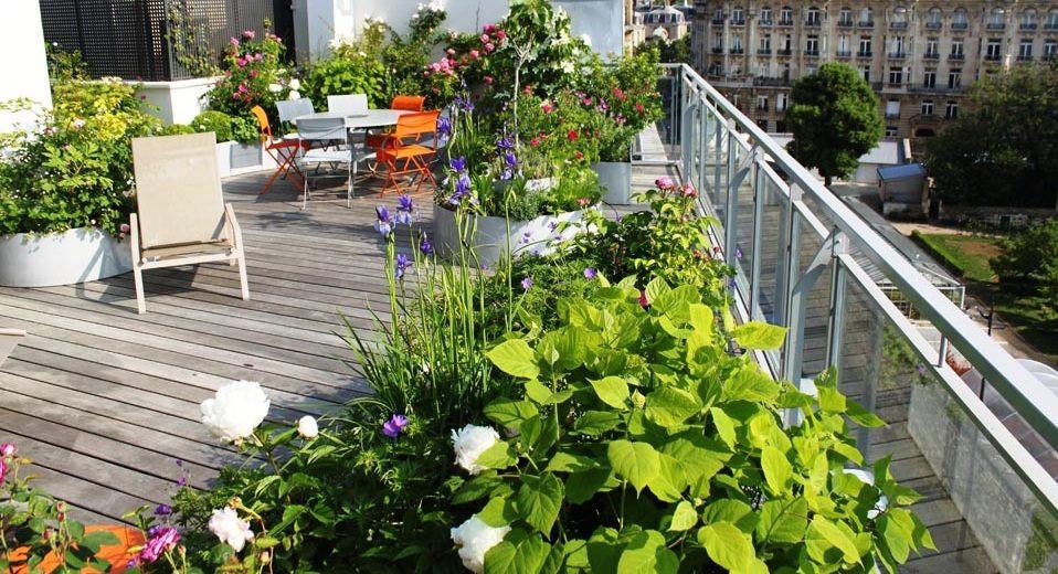Cómo preservar la privacidad en tu terraza: plantas