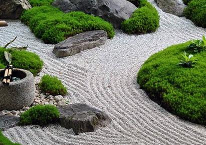 camino arena jardin