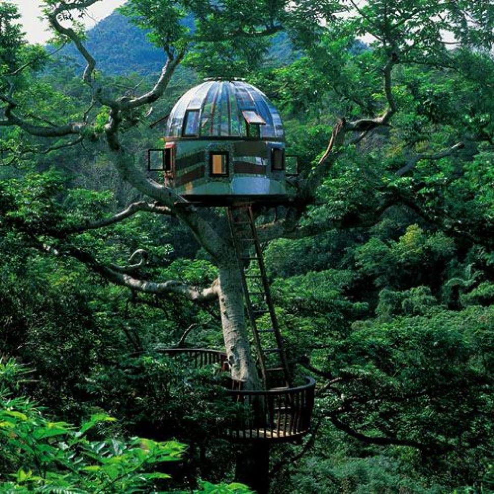 7 impresionantes casas de árbol: casa de ciencia ficción