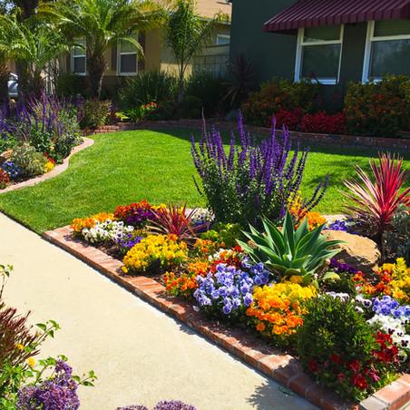 Ideas para iniciarte en el arte floral de jardín