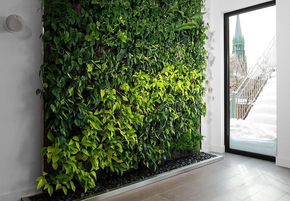 Jardines verticales para cubrir espacios muertos